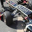 Lotus nose detail