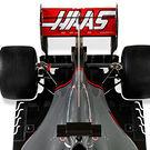 rear-wing